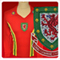 from walesmatchshirts.com